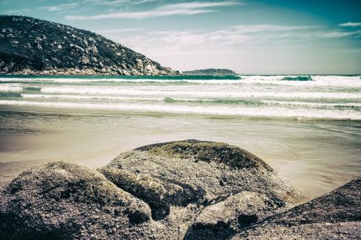 Picnic Bay (2015)